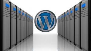 Tips Memilih Hosting untuk WordPress