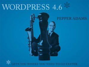 Apa Saja Yang Baru di WordPress 4.6