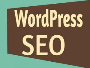 Tips SEO WordPress, Yang Bisa Digunakan Untuk Menaikan Traffic