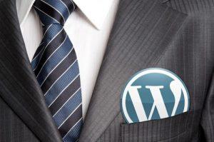 Tips Menjadi Pengembang WordPress Yang Sukses