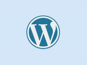 Cara Cepat Mengembangkan Blog WordPress