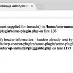 Memperbaiki Error File Pluggable.php di WordPress