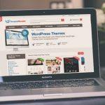 Yang Harus Diperhatikan Dalam Memilih Tema WordPress