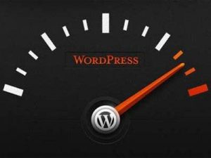 Cara Menghapus Cache WordPress