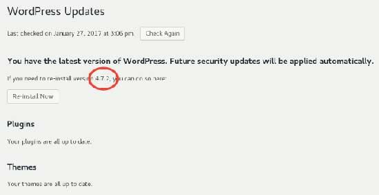 Lihat Versi WordPress Dari Command Line