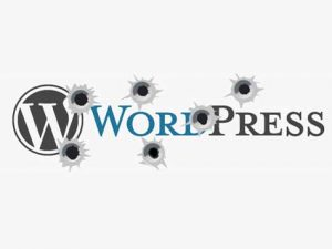 Hacker Incar Website WordPress Yang Tidak Update