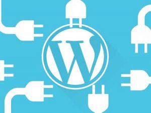 5 Plugin WordPress Penting Untuk Semua Pemula