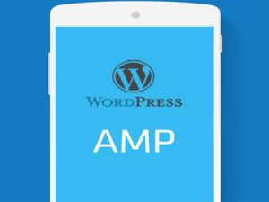 Cara Settings AMP di WordPress