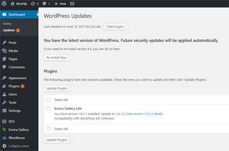 Cara Update Plugin WordPress yang Benar
