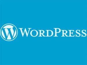 Sudah Rilis Segera Update WordPress 4.8.1