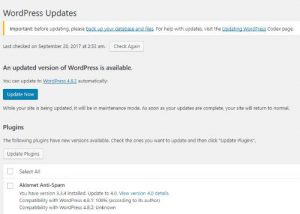 Segera Update ke WordPress 4.8.2 Security Release