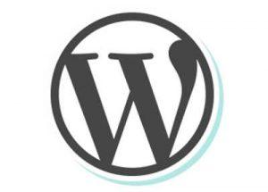8 Plugin WordPress Dasar Yang Wajib Ada di Website WordPress