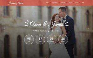5 Plugin WordPress Untuk Website Pernikahan