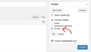 Cara Membuat Private Post di WordPress