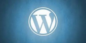 Cara Mengoptimalkan Website WordPress Kamu