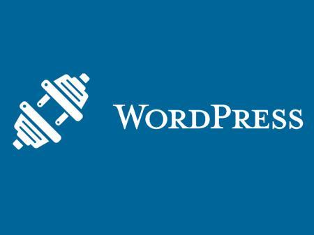 Fakta Penting Mengenai Tema WordPress